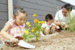 【屋上庭園の楽しみ方】親子で育てる屋上菜園。親子で一緒に何かを育て、収穫する喜びを味わえるかけがえのない大切な時間。