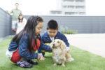 【屋上庭園の楽しみ方③】愛犬との大切な時間。リード無しで自由に遊べる開放感。(屋上)