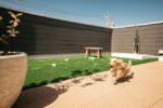 【屋上庭園の楽しみ方】愛犬のびのび!屋上ドッグラン。リードなしで自由に走り回れます。(屋上)