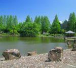 庄和総合公園まで徒歩9分(周辺)